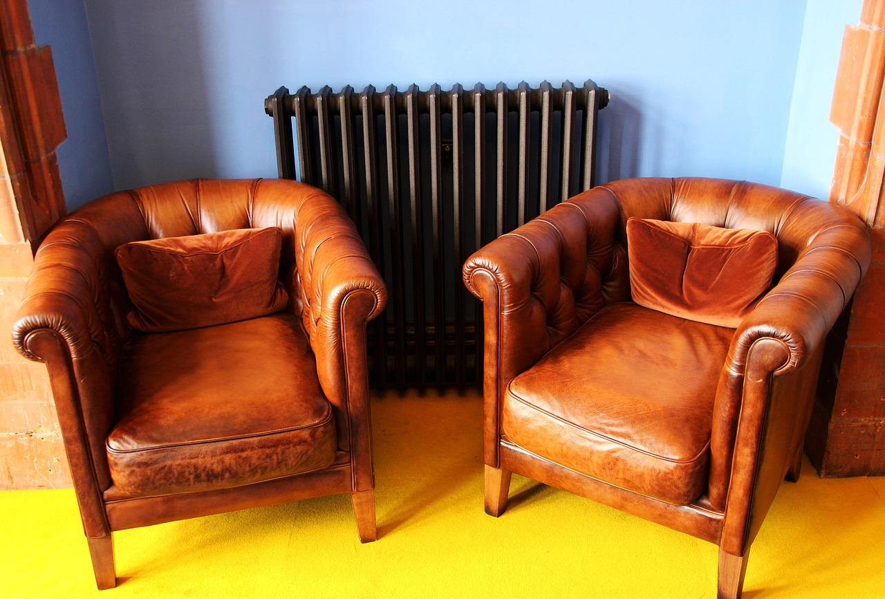 How to Clean Mold and Mildew Stains off of Leather Furniture ...